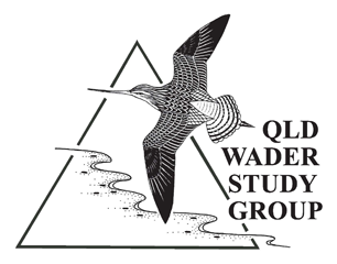 Queensland Wader Study Group